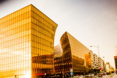 Den gyldne facade