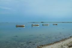 Både på stille vand
